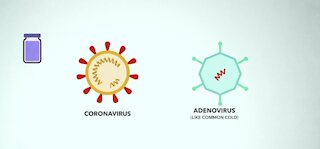 What is the difference between COVID-19 vaccines?