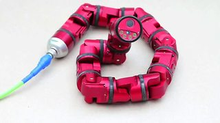 Serpent robot evolves into Snake Monster - Video
