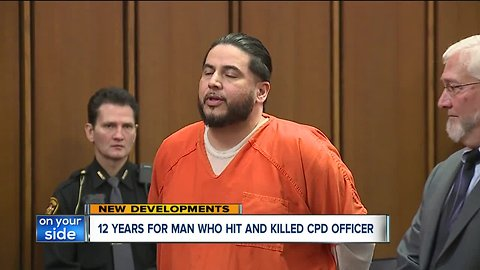 Driver who killed police officer David Fahey in hit-skip sentenced to 12 years in prison