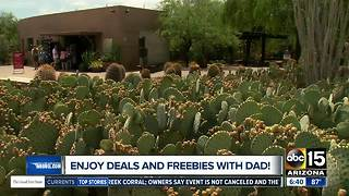 Treat Dad this weekend with some great deals - Video