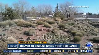 Denver City Council to hear proposed changes to Green Roof Initiative - Video