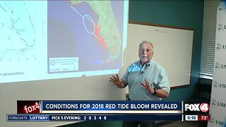 USF researchers discover red tide formation zone