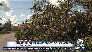Assessing the damage, places offering help - Video