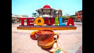 NO WAY! 7 things you never knew about tequila - ABC15 Digital