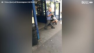 Woman pushes stroller while riding Segway