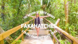 Fakahatchee Strand Preserve State Park, Florida - Video
