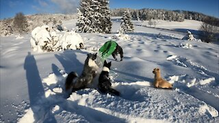 Diving into the snow be like