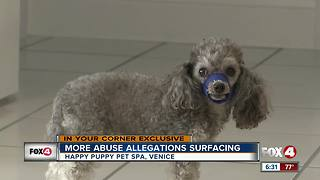 Another dog abuse claim towards local groomer - Video