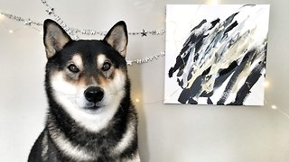 It's Pawcasso! – Dog Makes Family Thousands Of Dollars Through Amazing Masterpieces