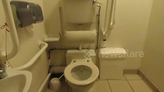 Leaky toilet appears to make 'sweet water music' - Video