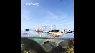 Plastics Release Greenhouse Gases While They Break Down - Video