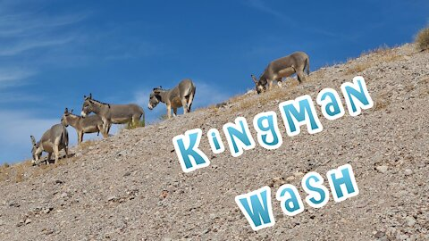 Kingman Wash, Arizona