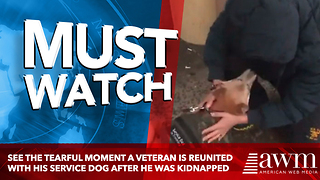 See The Tearful Moment A Veteran Is Reunited With His Service Dog After He Was Kidnapped - Video