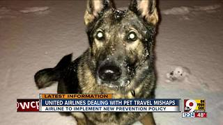 United Airlines dealing with pet travel mishaps - Video