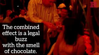 Chocolate Sniffing Fad in Europe.MP4 - Video