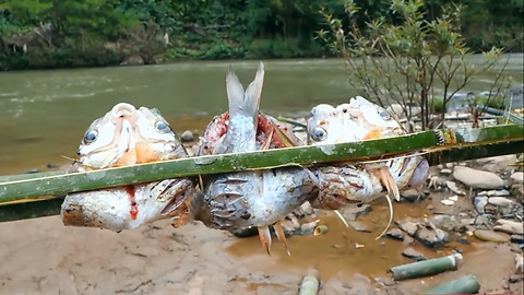 Bake fish with bamboo tube