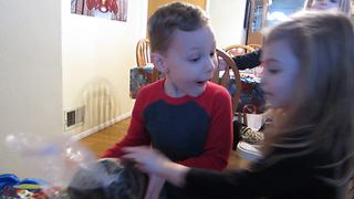 Little Boy Can't Contain His Excitement About Birthday Presents - Video