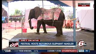 Festival hosts notorious elephant handler, attendees concerned about animal - Video
