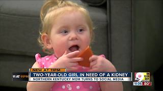 Two-year-old Lily needs a kidney