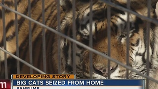 Exotic animals seized from Pahrump home - Video