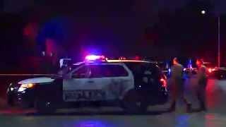 Man shot after threatening officers with pellet gun - Video