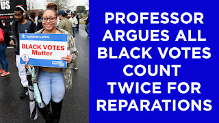 """A law professor argues all black votes should count twice for reparations. Because """"equality."""""""