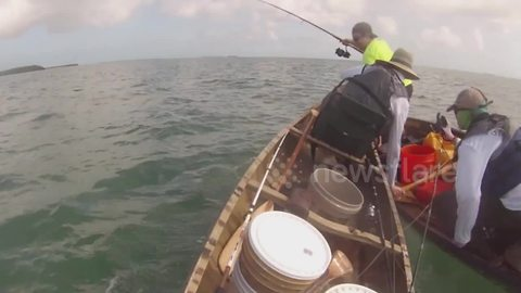 Huge Shark Repeatedly Attacks Fishermen In Canoe