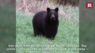 Teen Camper Attacked By Bear While Asleep At Church Retreat | Rare News - Video