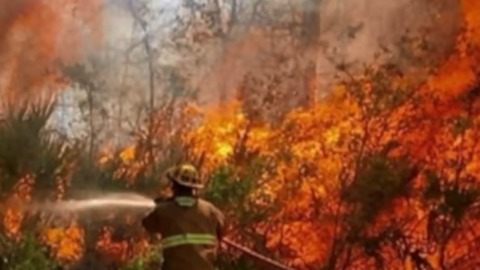 County-line brush fire in Martin, St. Lucie County forces some homeowners to evacuate