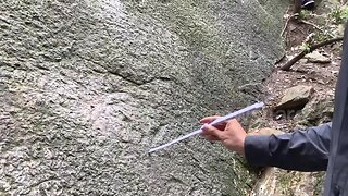 Early Jurassic era dinosaur footprints discovered by hiker in Chongqing