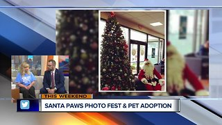 Almost Home and LaFontaine Subaru host Santa Paws Adoption Event