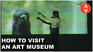 How to Visit an Art Museum - Video