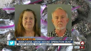CCSO shuts down marijuana grow operation - Video