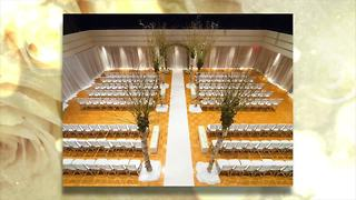 Ultimate Wedding Show 2018: City of Dearborn