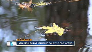 Water contamination problems arise for Withlacoochee flood victims - Video