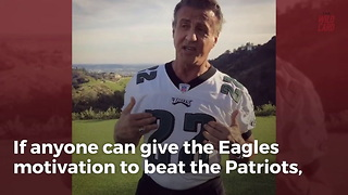 Sylvester Stallone Buries Patriots With One Perfect Photo - Video