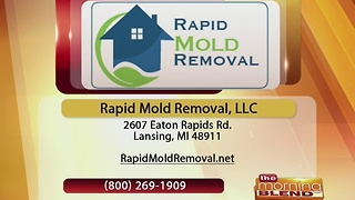 Rapid Mold Removal -11/30/16 - Video