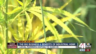 The potential of industrial hemp in Kansas - Video