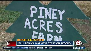 Piney Acres Farm offers fall favorites for your family to enjoy - Video