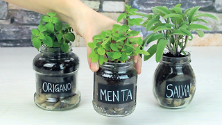 Glass jar herb garden - Video
