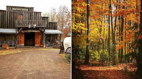 Ontario's New Haunted Escape Trail Opens Next Month & It's Like Being In A Horror Movie