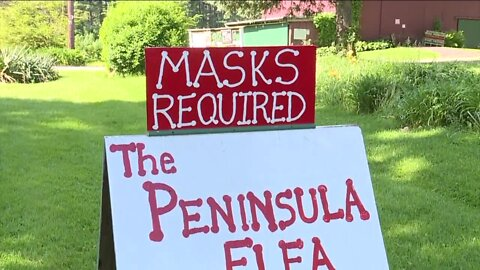 Big finds, small prices and safety guidelines: Peninsula Flea is back