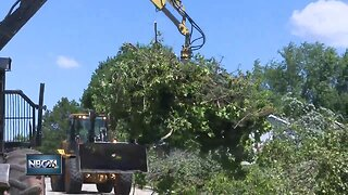 Towns cleaning up after storm damage