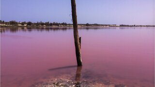 Situated about one hour away from Senegal's capital Dakar is a rather unusual lake. Lake Retba, or simply Lac Rose, as the locals call it, is world renowned for its vivid pink colour.