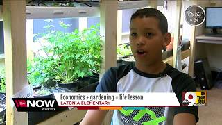Fifth-graders operate gardening business in economics class at Latonia Elementary - Video