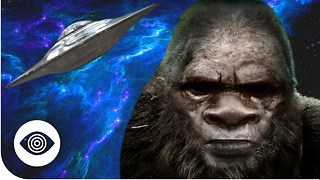 Is Bigfoot An Alien? - Video