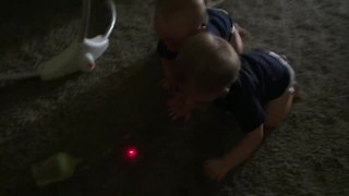Twins mesmerized by laser dot, chase after it - Video