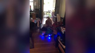Golden Retriever Gets A Hoverboard Ride