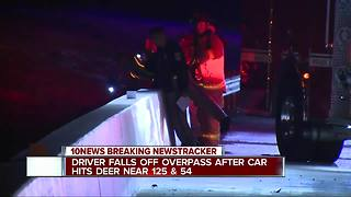 Driver falls from freeway after car hits deer