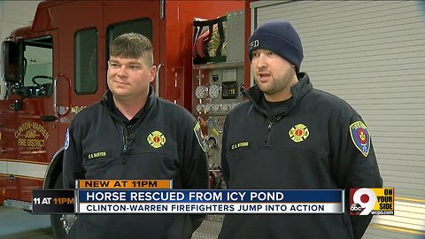 Firefighters rescue horse from icy pond